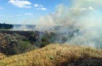 На Днепропетровщине произошел масштабный пожар в экосистеме