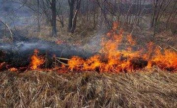 47 выездов за минувшие сутки: в области сохраняется пожароопасная ситуация