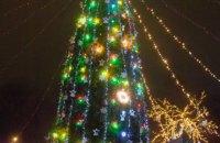 В парке им. Глобы открылась самая большая живая елка Днепра