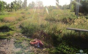 В Киевской области мужчина прямо посреди села забил насмерть свою гражданскую супругу (ФОТО)
