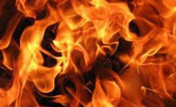 В области мать едва не сожгла своего 2-летнего сына