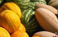 В Днепропетровской области не допущено к продаже почти 6,5 тонн испорченных дынь и арбузов