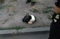 В Днепре спасли щенков, которые провалились в полутораметровую яму