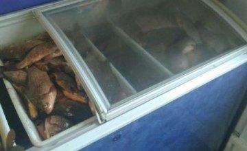 В Днепропетровской области в продуктовом магазине незаконно торговали рыбой