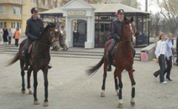 9 мая Днепропетровск будут патрулировать 2 наряда конной милиции