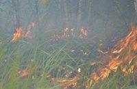 Спасателям пока полностью не удалось ликвидировать пожар на полигоне в Гвардейском (ВИДЕО)