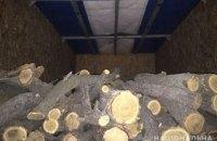 На Днепропетровщине задержали «черного лесоруба» с древесиной на сумму более 130 тыс. грн