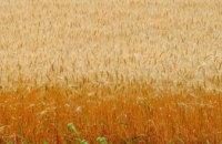 Днепропетровщина - самый стабильный регион по росту ВВП в сельском хозяйстве