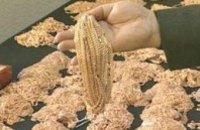 В Днепропетровске ювелиры за 3 года продали 800 кг контрабандного золота