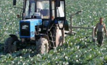 Реализация продукции сельского хозяйства увеличилась на 65% в январе-феврале 2008 года