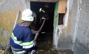 На Днепропетровщине 7-летняя девочка пострадала в результате пожара