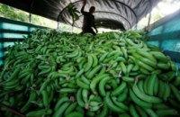В Испании нашли 7 кг кокаина в резиновых бананах