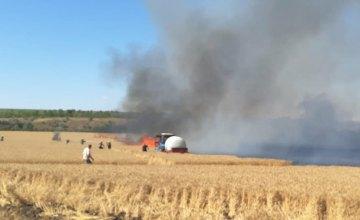 В Днепропетровской области сгорело 2 га пшеницы