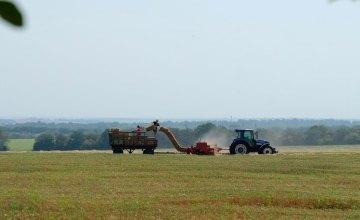 Аграрии Днепропетровской области завершили сеять озимые