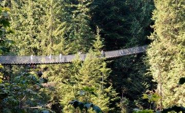 В Колумбии обрушился подвесной мост: есть погибшие