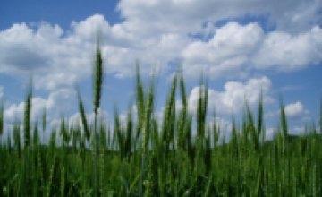 15 мая в Днепропетровске завершился форум для агрожурналистов