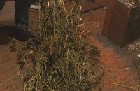 Двое жителей Днепропетровщины хранили у себя дома разные виды наркотиков