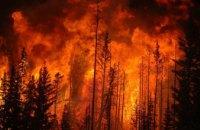 За 2020 год на Днепропетровщине выгорело почти 80 га леса