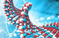Ученые нашли ДНК неизвестных древних жителей