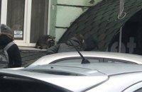 В центре Киева на улице заметили енота (ФОТО)