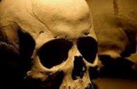 В Николаевской области неизвестные выкинули в поле человеческие останки