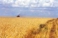 Аграрии области уже засеяли яровыми 8,2 тысяч гектаров