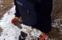 На Днепропетровщине мужчина во время прогулки по улице обнаружил боевой снаряд