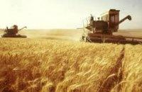 На Днепропетровщине собрали на 420 тыс тонн ранних зерновых больше, чем в прошлом году