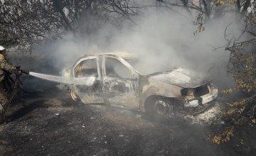 Горящий автомобиль и тело на расстоянии 10 м: на Днепропетровщине в результате возгорания сухой травы погиб мужчина