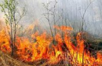 С начала года на Днепропетровщине произошло более 2 тысяч пожаров в экосистемах