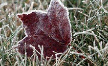 В Украине до конца апреля ожидаются заморозки, - Укргидрометцентр