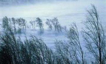 Выходные принесут Днепропетровску мокрый снег и метели