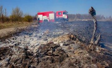 В Днепре продолжается кампания по борьбе со сжиганием листьев и отходов