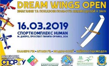 В Днепре впервые состоятся соревнования по авиамодельному спорту - Dream wings open