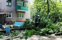 На Днепропетровщине упавшее дерево перегородило вход в подъезд дома (ФОТО)