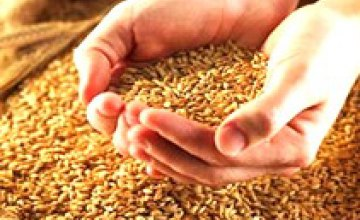 Сельхозпредприятия Днепропетровской области получили от реализации зерна в январе-мае 2008 года 188, 352 тыс. грн.