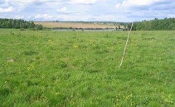 Эксперт: «Из 27 млн. га сельхозземель в Украине 53% принадлежат пенсионерам»