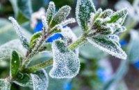 Жителей Днепра и области предупреждают о резком похолодании