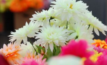 Глава Гостаможни рекомендовал покупать отечественные цветы