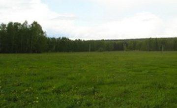 В Днепропетровске приняли программу развития земельных отношений на 2011-2015 гг.