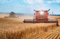 Как на урожайность Днепропетровщины повлияли длительные осадки? (ВИДЕО)