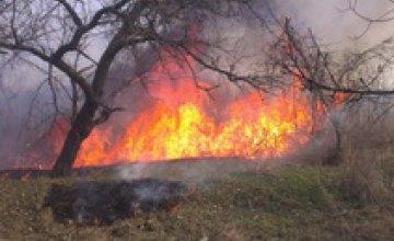 В Днепре спасатели ликвидировали два возгорания сухой травы