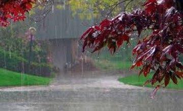 8 июля жителей Днепропетровщины ожидают дожди и грозы