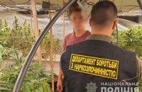 Наркотики на миллион гривен: в Криворожском районе правоохранители задержали группу лиц, которые выращивали каннабис