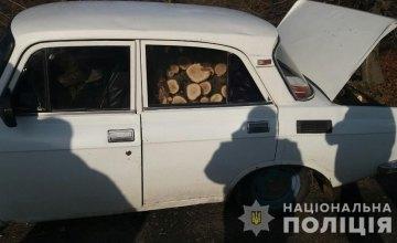 На Днепропетровщине задержали «черного» лесоруба с полным дровами автомобилем