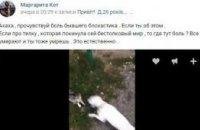 17-летнюю харьковчанку отправили под суд за видео с убийством котенка (ВИДЕО)