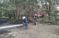 На Днепропетровщине три часа тушили лесной пожар