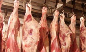 В Днепропетровске ветмедики обнаружили несколько тыс. т мяса сомнительной свежести