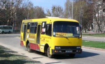 В Днепропетровской области 6 водителей автобусов находились за рулем пьяными, а один - в наркотическом опьянении