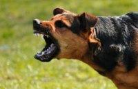 71-летнюю пенсионерку в собственном дворе загрызла собака (ВИДЕО)
